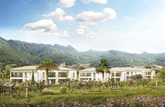 investissement immobilier Immortelles Calenzana